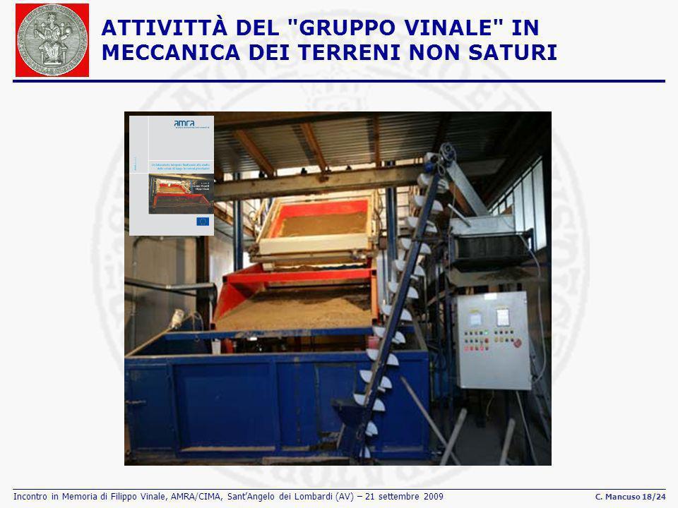 Incontro in Memoria di Filippo Vinale, AMRA/CIMA, SantAngelo dei Lombardi (AV) – 21 settembre 2009 C. Mancuso 18/24 ATTIVITTÀ DEL