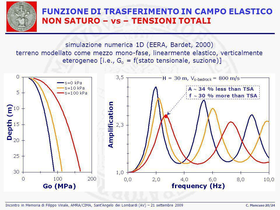 Incontro in Memoria di Filippo Vinale, AMRA/CIMA, SantAngelo dei Lombardi (AV) – 21 settembre 2009 C. Mancuso 20/24 FUNZIONE DI TRASFERIMENTO IN CAMPO