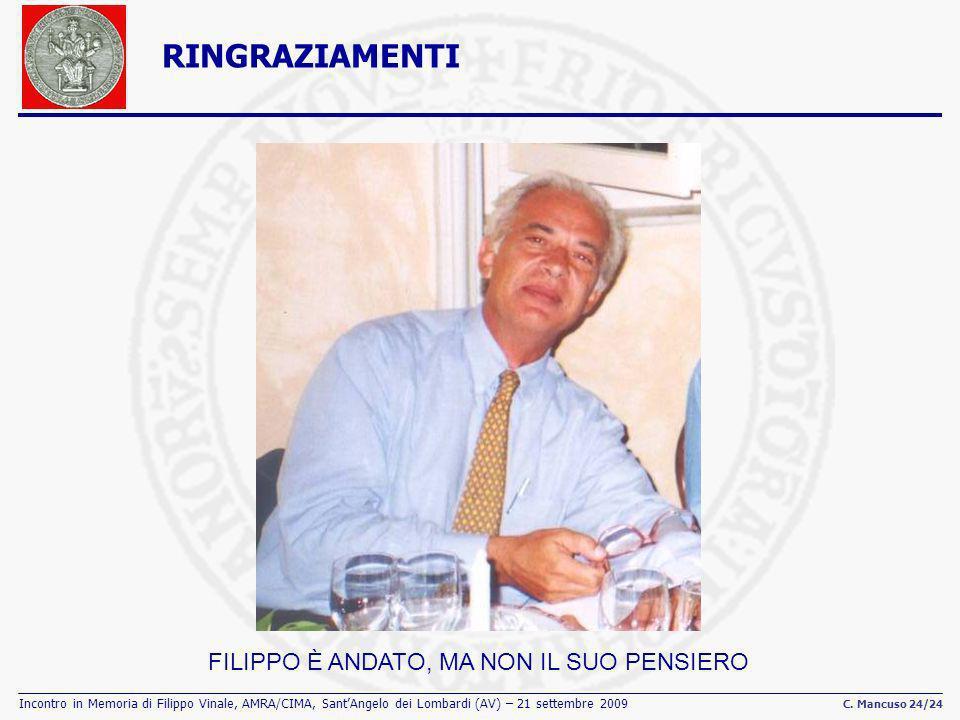 Incontro in Memoria di Filippo Vinale, AMRA/CIMA, SantAngelo dei Lombardi (AV) – 21 settembre 2009 C. Mancuso 24/24 RINGRAZIAMENTI FILIPPO È ANDATO, M