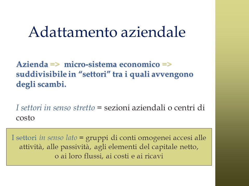I settori in senso lato = gruppi di conti omogenei accesi alle attività, alle passività, agli elementi del capitale netto, o ai loro flussi, ai costi