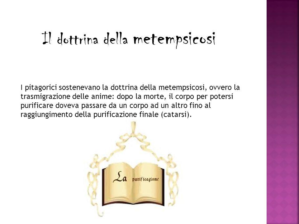 Il dottrina della metempsicosi I pitagorici sostenevano la dottrina della metempsicosi, ovvero la trasmigrazione delle anime: dopo la morte, il corpo