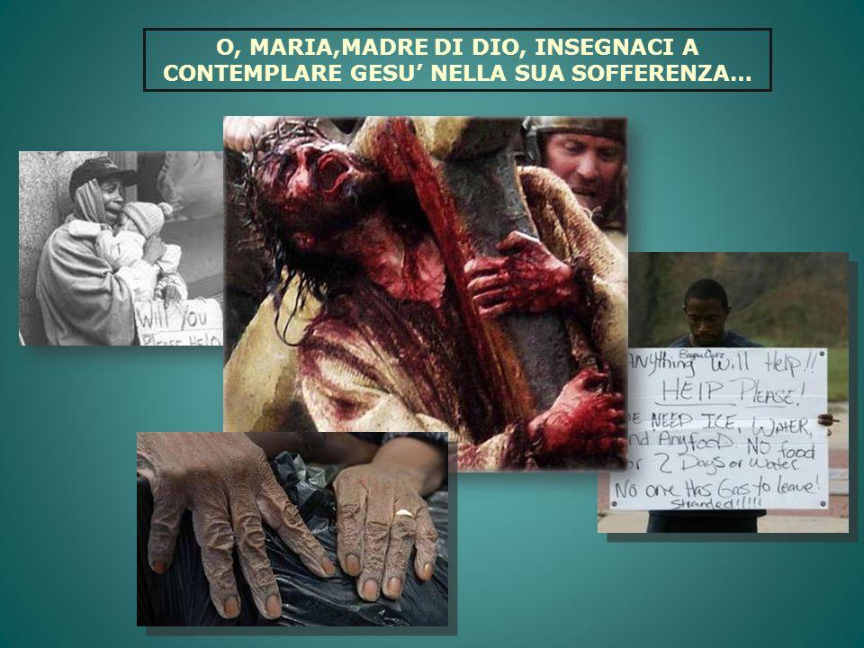 O, MARIA,MADRE DI DIO, INSEGNACI A CONTEMPLARE GESU NELLA SUA SOFFERENZA…