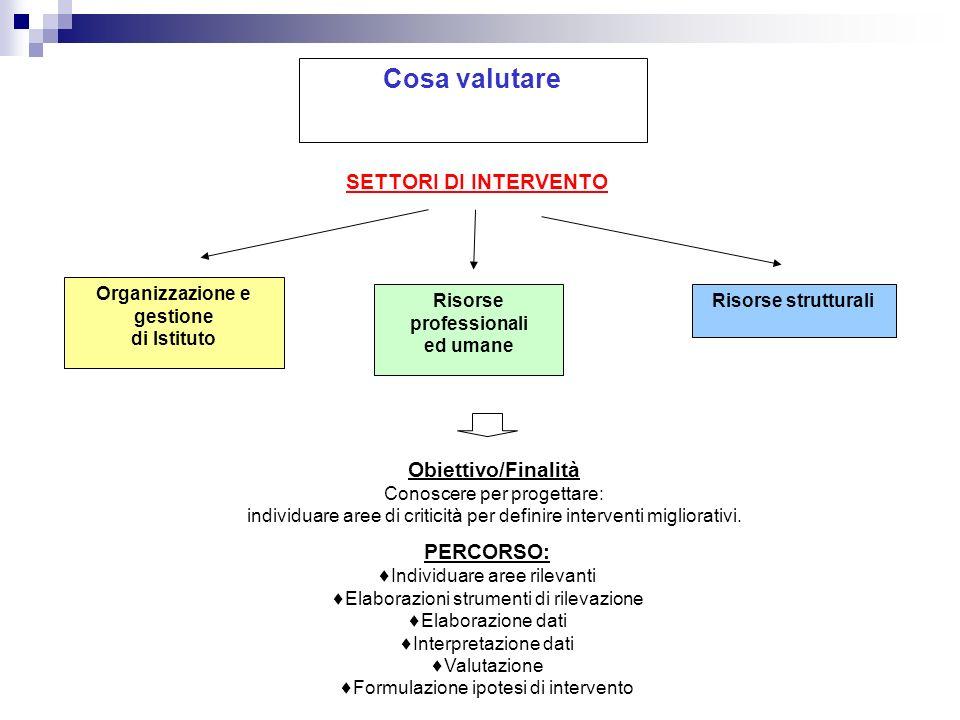 Cosa valutare SETTORI DI INTERVENTO Organizzazione e gestione di Istituto Risorse professionali ed umane Risorse strutturali Obiettivo/Finalità Conosc