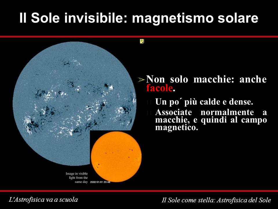 L Astrofisica va a scuola Il Sole come stella: Astrofisica del Sole Il Sole invisibile: magnetismo solare Non solo macchie: anche facole.