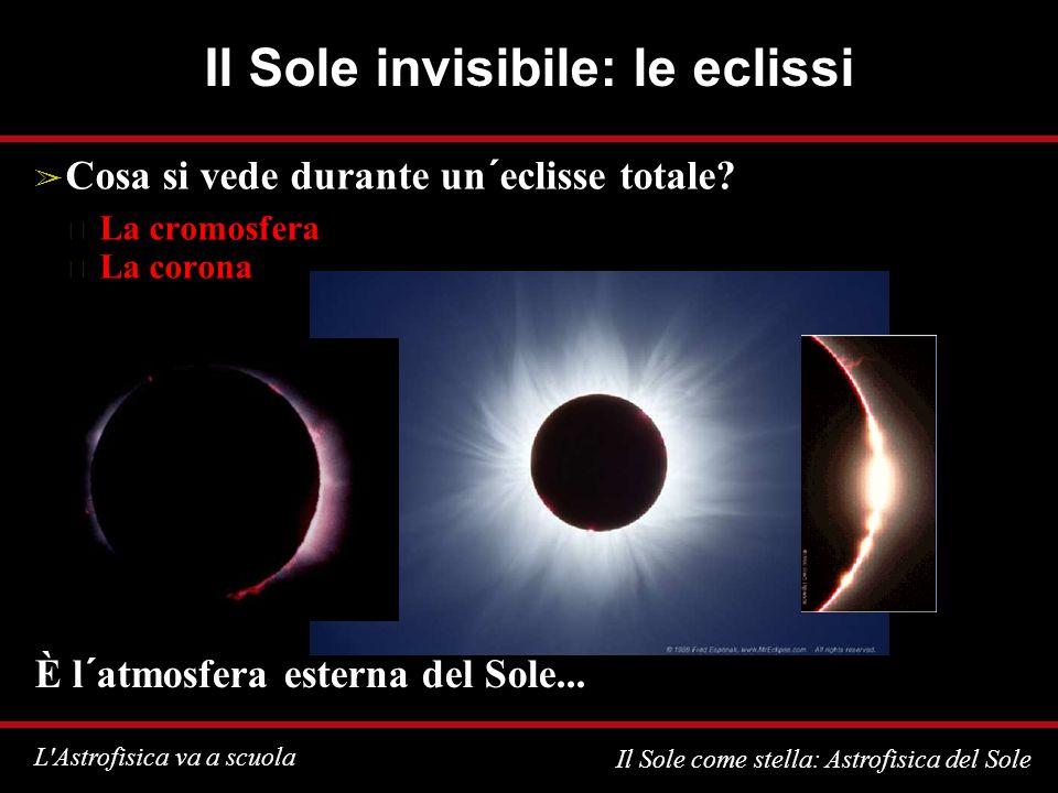 L Astrofisica va a scuola Il Sole come stella: Astrofisica del Sole Il Sole invisibile: le eclissi Cosa si vede durante un´eclisse totale.