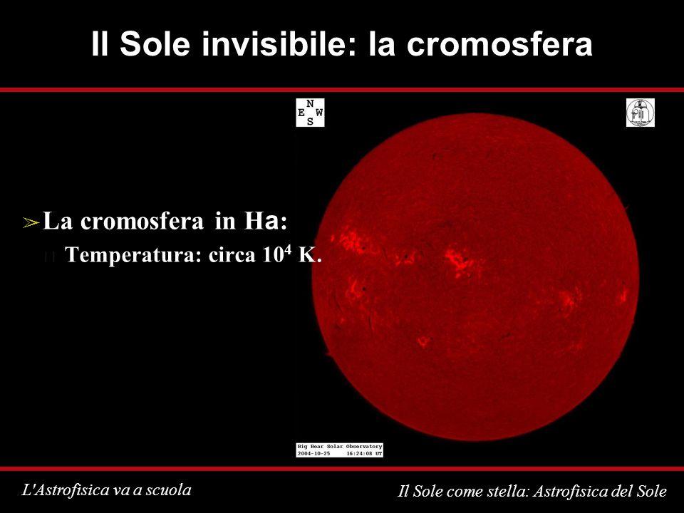L'Astrofisica va a scuola Il Sole come stella: Astrofisica del Sole Il Sole invisibile: la cromosfera La cromosfera in H a : Temperatura: circa 10 4 K
