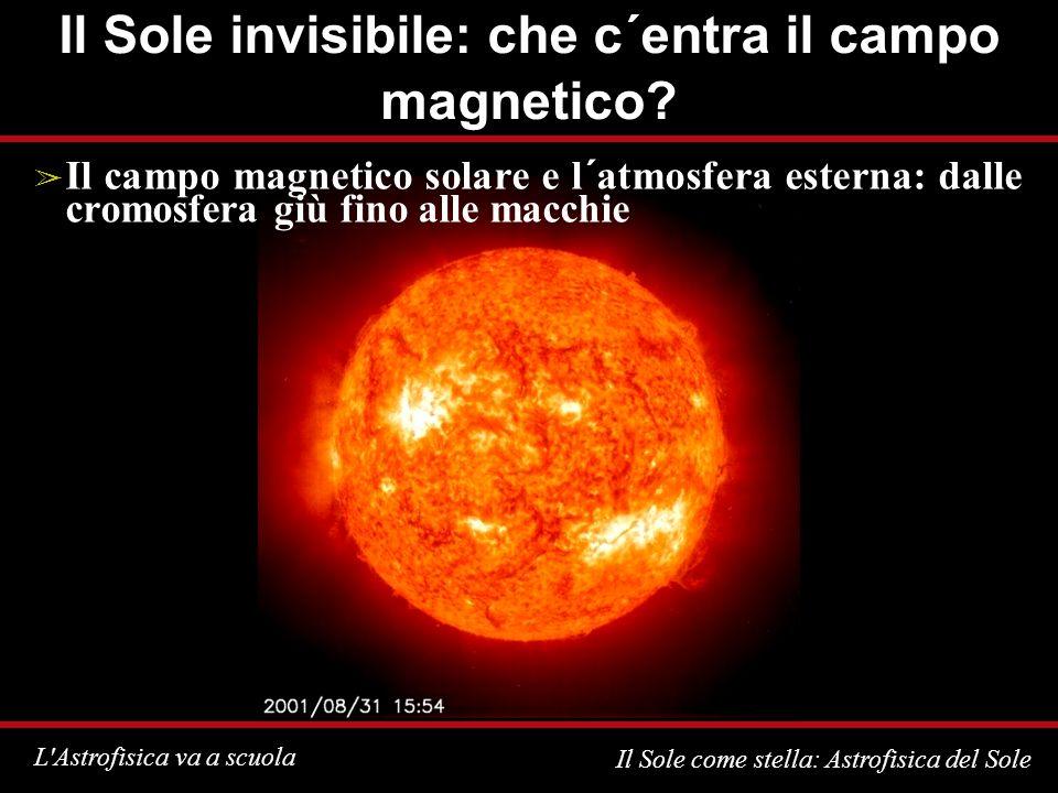 L Astrofisica va a scuola Il Sole come stella: Astrofisica del Sole Il Sole invisibile: che c´entra il campo magnetico.