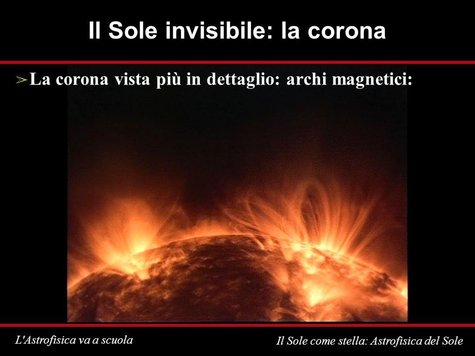 L Astrofisica va a scuola Il Sole come stella: Astrofisica del Sole Il Sole invisibile: la corona La corona vista più in dettaglio: archi magnetici: