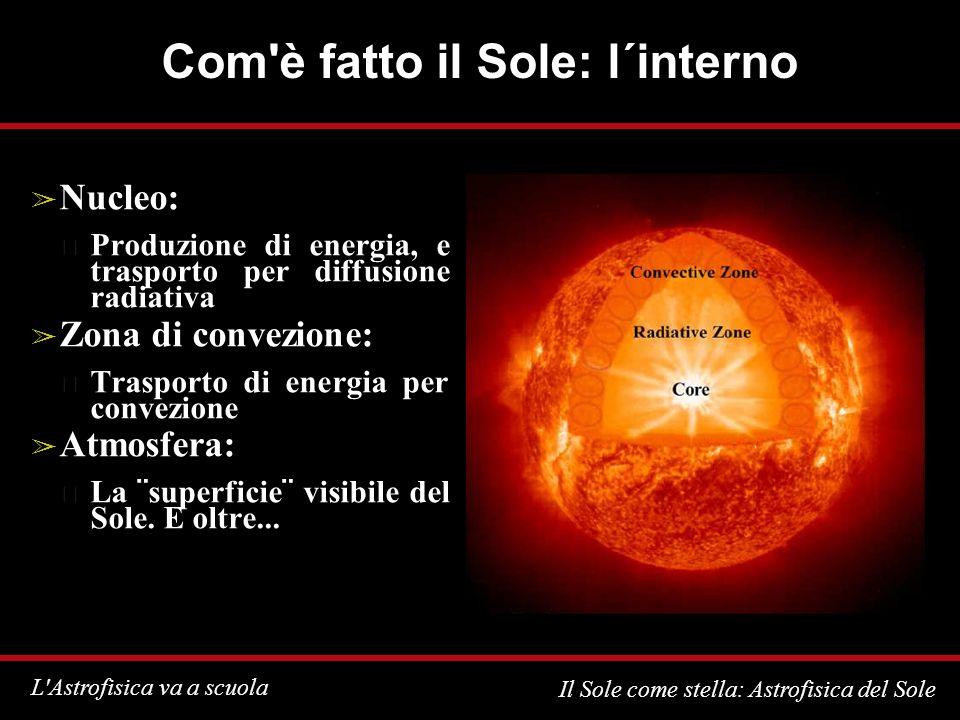 L Astrofisica va a scuola Il Sole come stella: Astrofisica del Sole Com è fatto il Sole: l´interno Nucleo: Produzione di energia, e trasporto per diffusione radiativa Zona di convezione: Trasporto di energia per convezione Atmosfera: La ¨superficie¨ visibile del Sole.