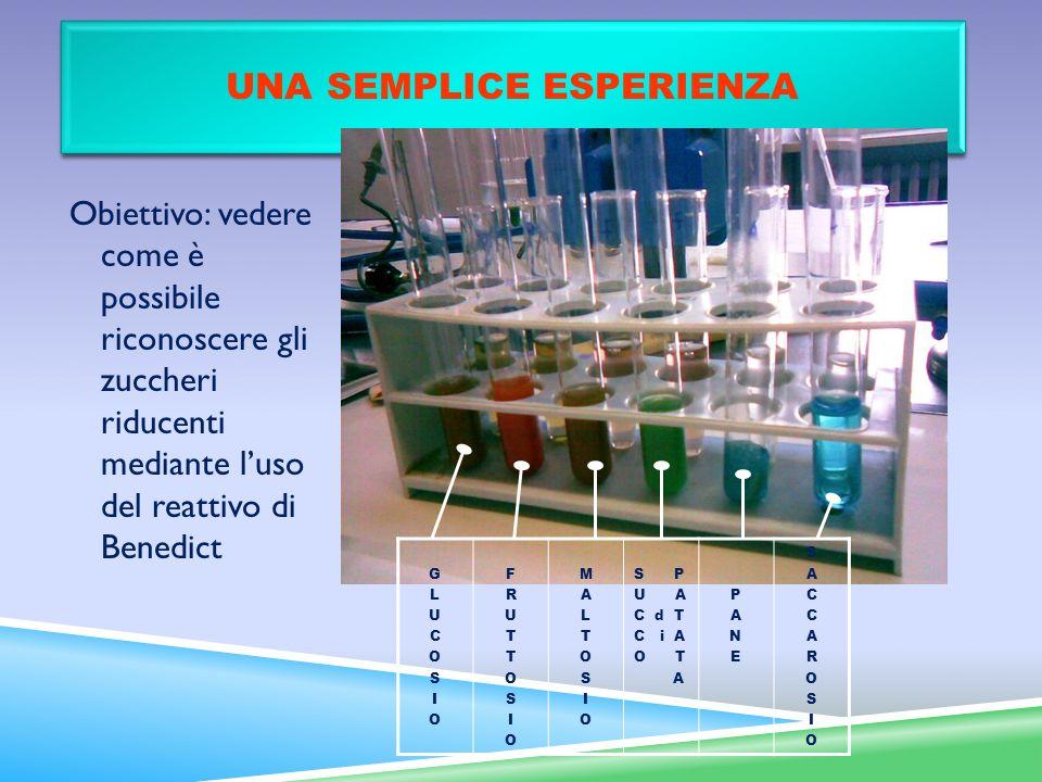 UNA SEMPLICE ESPERIENZA Obiettivo: vedere come è possibile riconoscere gli zuccheri riducenti mediante luso del reattivo di Benedict GLUCOSIOGLUCOSIO