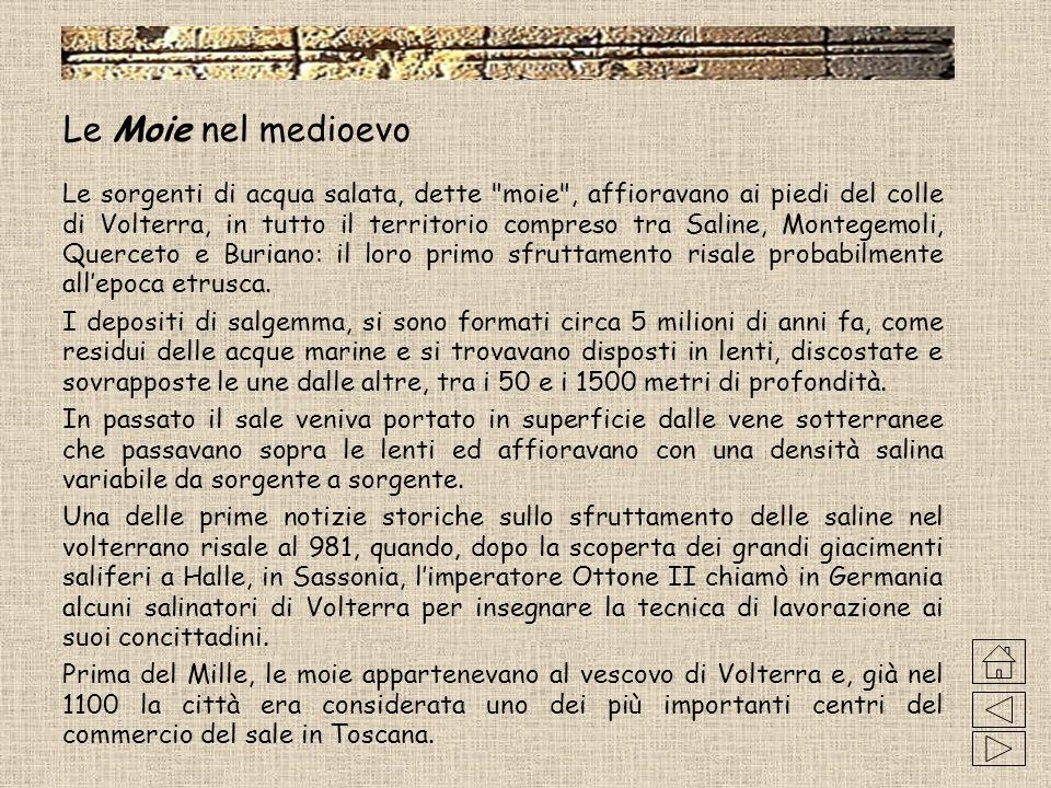 I mercati volterrani Nellanno 851 il vescovo Andrea istituì, per facoltà accordatagli da Ludovico II, due mercati: uno presso la cattedrale, alla metà