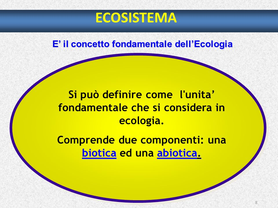 8 ECOSISTEMA E il concetto fondamentale dellEcologia Si può definire come l'unita fondamentale che si considera in ecologia. bioticaabiotica. Comprend