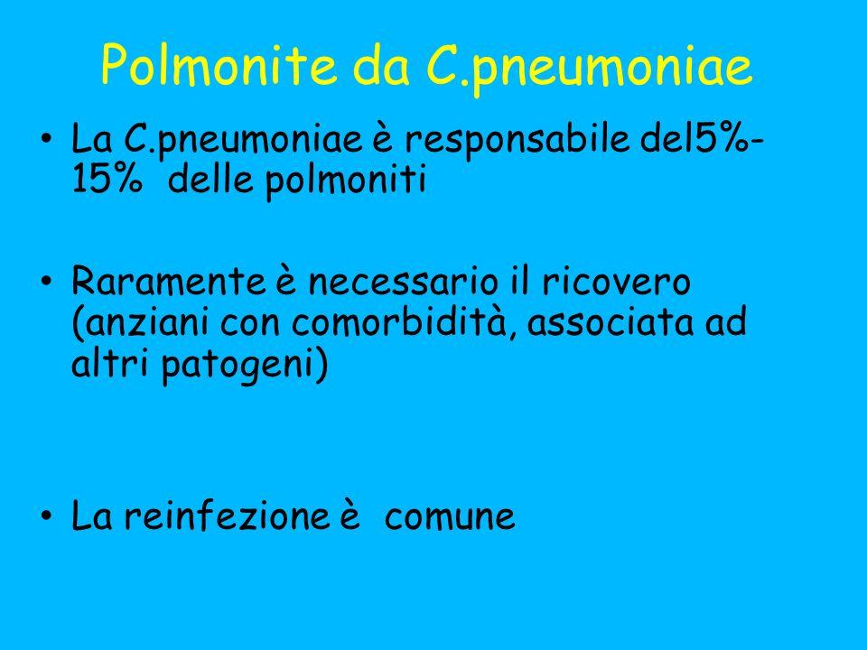 Polmonite da C.pneumoniae La C.pneumoniae è responsabile del5%- 15% delle polmoniti Raramente è necessario il ricovero (anziani con comorbidità, associata ad altri patogeni) La reinfezione è comune