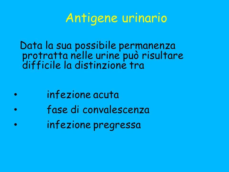 Antigene urinario Data la sua possibile permanenza protratta nelle urine può risultare difficile la distinzione tra infezione acuta fase di convalescenza infezione pregressa