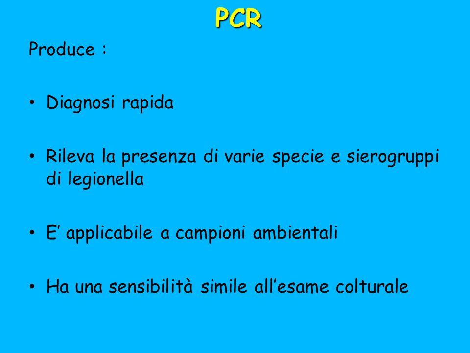 PCR Produce : Diagnosi rapida Rileva la presenza di varie specie e sierogruppi di legionella E applicabile a campioni ambientali Ha una sensibilità simile allesame colturale