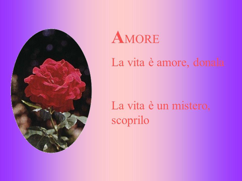 A MORE La vita è amore, donala La vita è un mistero, scoprilo