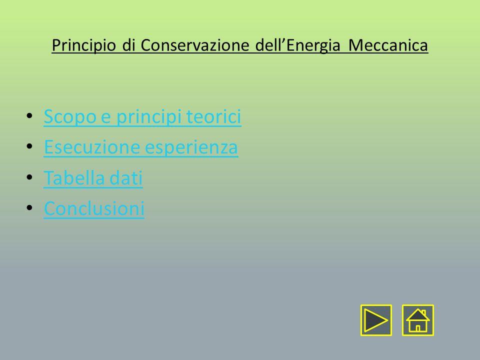 Scopo dellesperienza: Verificare il principio di conservazione dellenergia meccanica per un carrello trainato da un pesetto sulla rotaia a cuscino daria Principi teorici: In un sistema Isolato, lenergia meccanica si conserva.