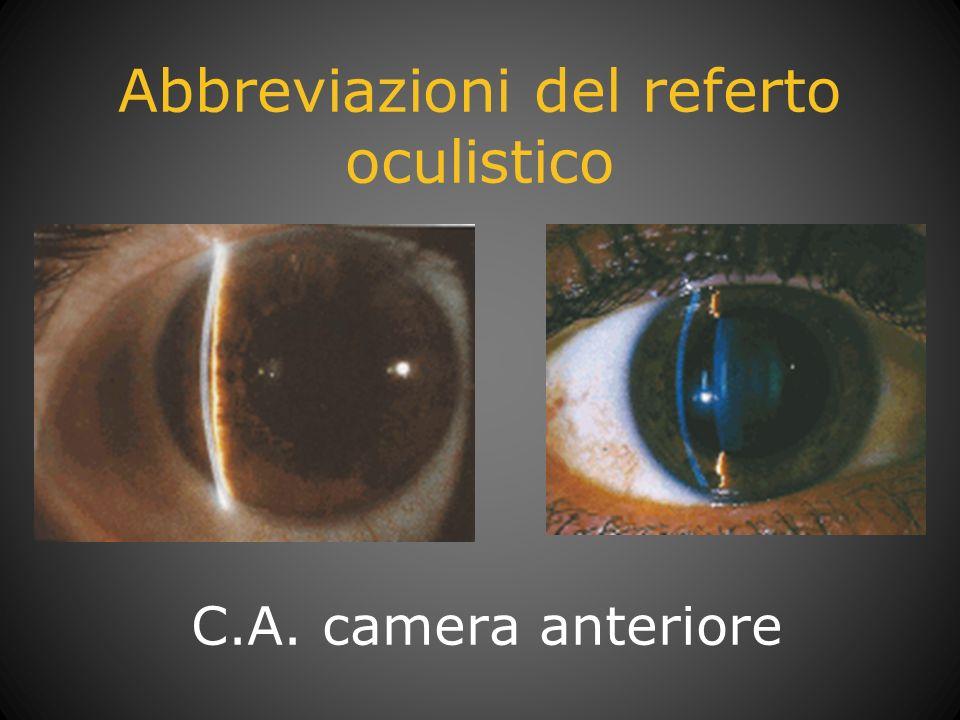 Abbreviazioni del referto oculistico C.A. camera anteriore