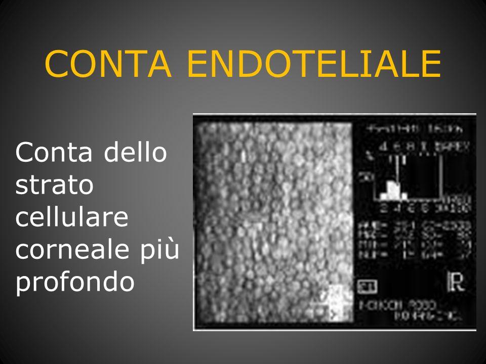 CONTA ENDOTELIALE Conta dello strato cellulare corneale più profondo