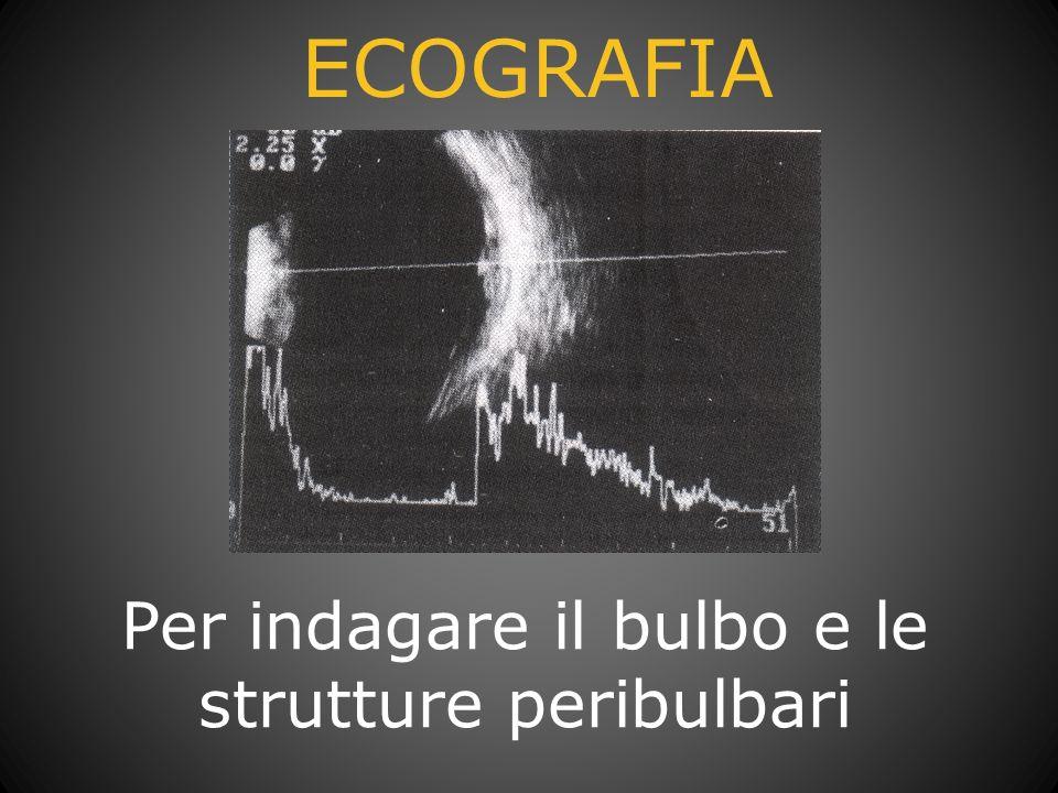 ECOGRAFIA Per indagare il bulbo e le strutture peribulbari