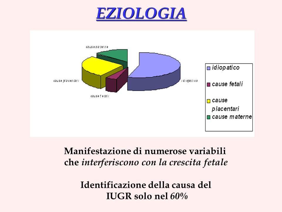 EZIOLOGIA Manifestazione di numerose variabili che interferiscono con la crescita fetale Identificazione della causa del IUGR solo nel 60%