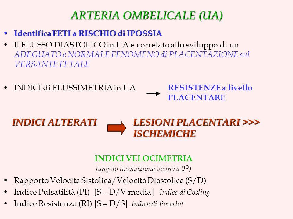 ARTERIA OMBELICALE (UA) Identifica FETI a RISCHIO di IPOSSIA Identifica FETI a RISCHIO di IPOSSIA Il FLUSSO DIASTOLICO in UA è correlato allo sviluppo di un ADEGUATO e NORMALE FENOMENO di PLACENTAZIONE sul VERSANTE FETALE INDICI di FLUSSIMETRIA in UA RESISTENZE a livello PLACENTARE INDICI ALTERATI LESIONI PLACENTARI >>> ISCHEMICHE INDICI VELOCIMETRIA (angolo insonazione vicino a 0°) Rapporto Velocità Sistolica/Velocità Diastolica (S/D) Indice Pulsatilità (PI) [S – D/V media] Indice di Gosling Indice Resistenza (RI) [S – D/S] Indice di Porcelot