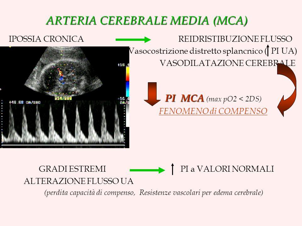 ARTERIA CEREBRALE MEDIA (MCA) IPOSSIA CRONICA REIDRISTIBUZIONE FLUSSO Vasocostrizione distretto splancnico ( PI UA) VASODILATAZIONE CEREBRALE PI MCA PI MCA (max pO2 < 2DS) FENOMENO di COMPENSO GRADI ESTREMI PI a VALORI NORMALI ALTERAZIONE FLUSSO UA (perdita capacità di compenso, Resistenze vascolari per edema cerebrale)