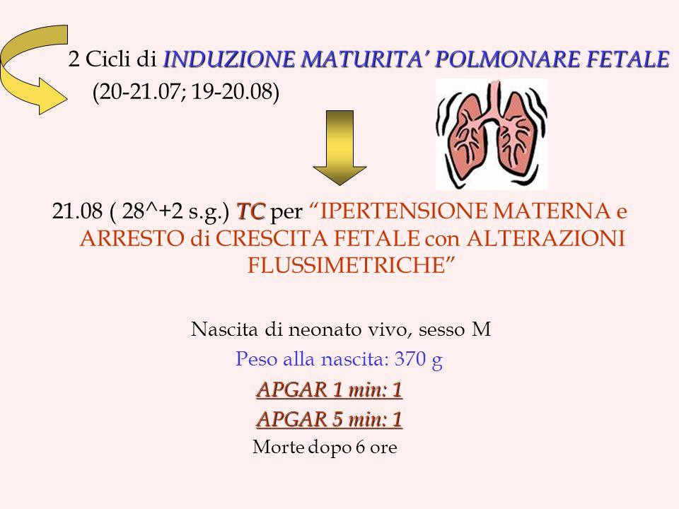 INDUZIONE MATURITA POLMONARE FETALE 2 Cicli di INDUZIONE MATURITA POLMONARE FETALE (20-21.07; 19-20.08) TC 21.08 ( 28^+2 s.g.) TC per IPERTENSIONE MATERNA e ARRESTO di CRESCITA FETALE con ALTERAZIONI FLUSSIMETRICHE Nascita di neonato vivo, sesso M Peso alla nascita: 370 g APGAR 1 min: 1 APGAR 5 min: 1 APGAR 5 min: 1 Morte dopo 6 ore