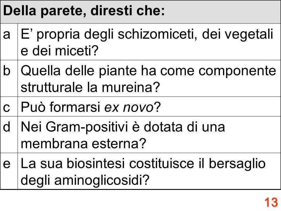12 Riguardo alla virulenza, diresti che: aHa senso parlarne a proposito della tossina colerica? bRiconosce nelle endotossine i suoi fattori tipici? cE