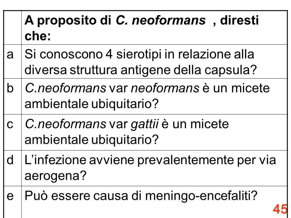 44 A proposito di dermatofitosi, diresti che: aSono patologie causate da lieviti? bPossono essere delle zoonosi? cNelle dermatofitosi da T.rubrum abbi