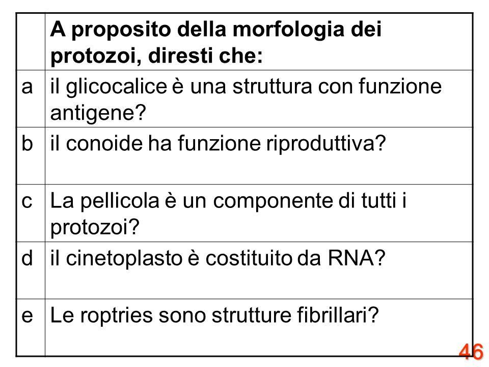 45 A proposito di C. neoformans, diresti che: aSi conoscono 4 sierotipi in relazione alla diversa struttura antigene della capsula? bC.neoformans var