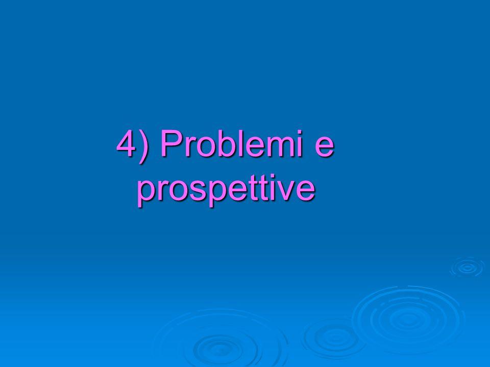 4) Problemi e prospettive