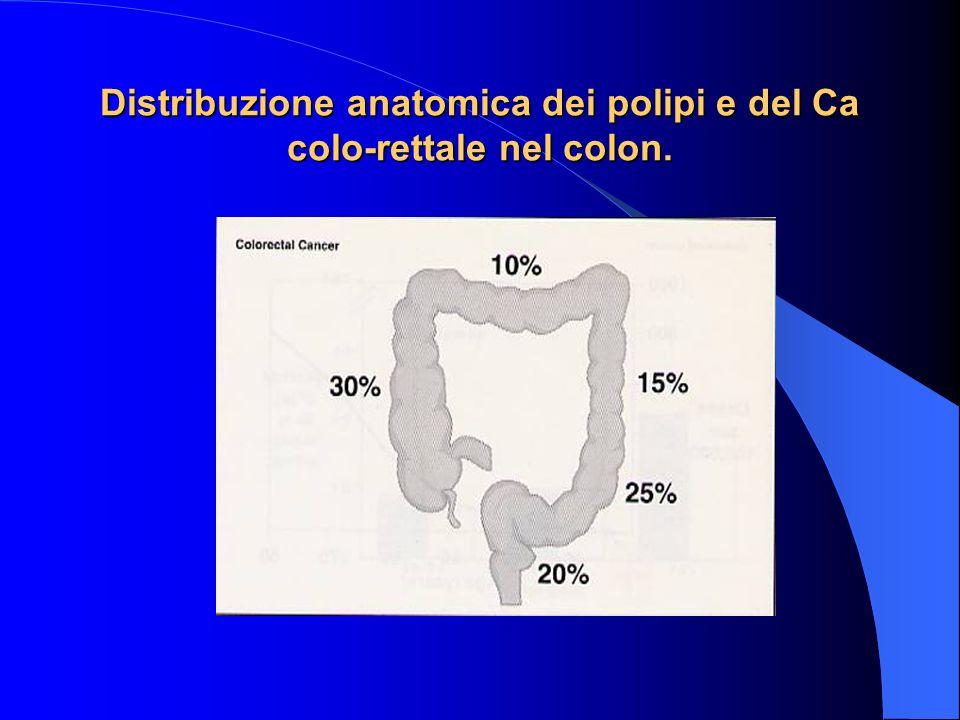Indicatori di qualità della coloscopia Tasso di raggiungimento del cieco > 95% Documentazione di una buona/ottima preparazione intestinale 90-95% Dura