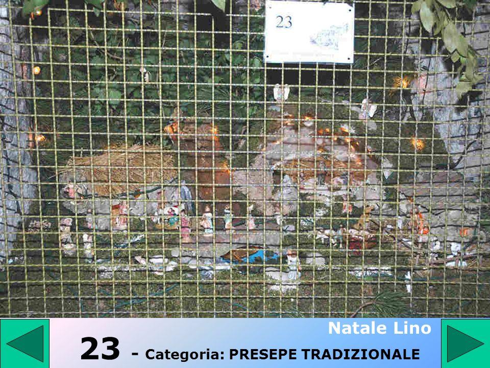 22 - Categoria: PRESEPE TRADIZIONALE Vergate Mario 3° Premio