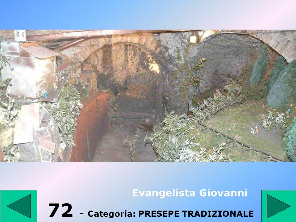 71 - Categoria: PRESEPE TRADIZIONALE Zullo Domenico