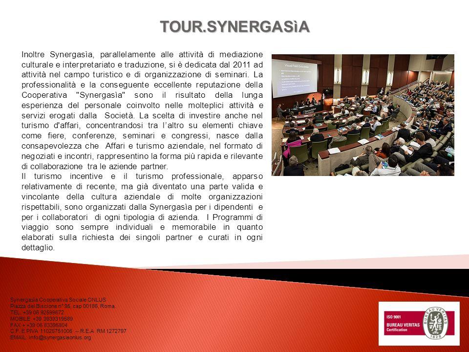 COMMESSA PREFETTURA DI ROMA SERVIZIO Parte relativa alla mediazione culturale, allinsegnamento dellitaliano e al supporto informatico per il CARA di Castelnuovo di Porto.