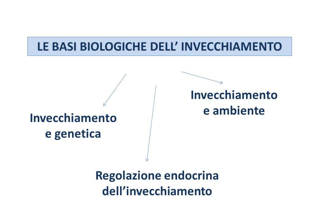 LE BASI BIOLOGICHE DELL INVECCHIAMENTO Invecchiamento e genetica Regolazione endocrina dellinvecchiamento Invecchiamento e ambiente