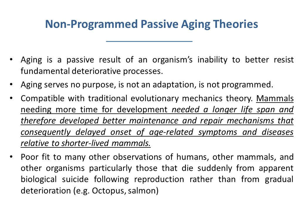 Non-Programmed Passive Aging Theories Aging is a passive result of an organisms inability to better resist fundamental deteriorative processes. Aging