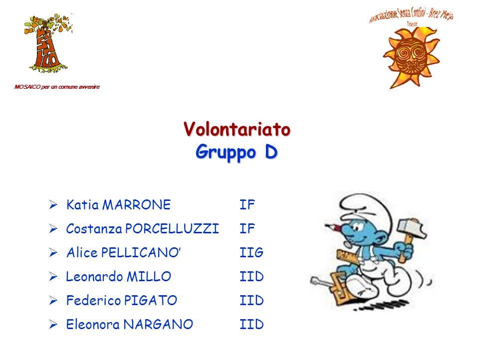 MOSAICO per un comune avvenire Volontariato Gruppo D Katia MARRONEIF Costanza PORCELLUZZIIF Alice PELLICANOIIG Leonardo MILLOIID Federico PIGATOIID Eleonora NARGANOIID
