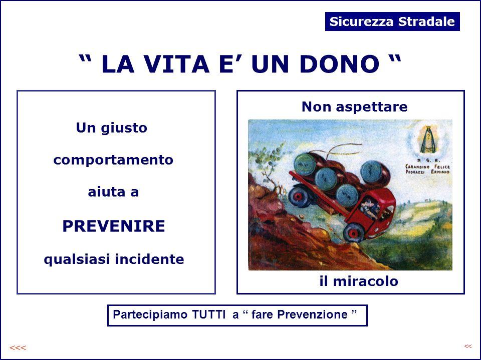 LA VITA E UN DONO Un giusto comportamento aiuta a PREVENIRE qualsiasi incidente Partecipiamo TUTTI a fare Prevenzione Non aspettare il miracolo Sicure