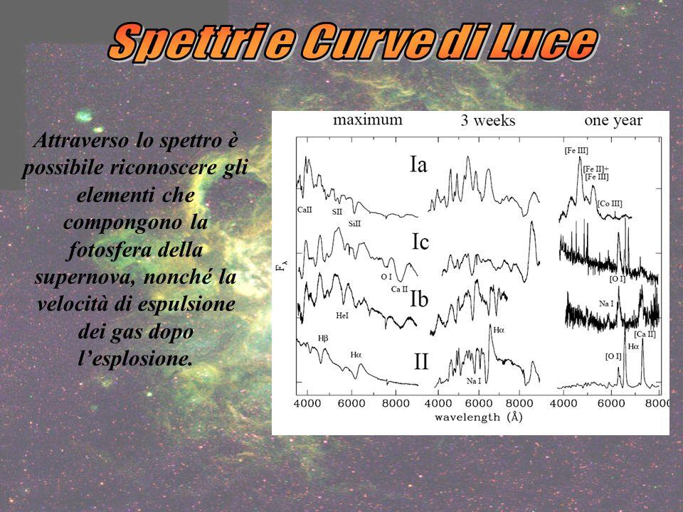 Attraverso lo spettro è possibile riconoscere gli elementi che compongono la fotosfera della supernova, nonché la velocità di espulsione dei gas dopo lesplosione.