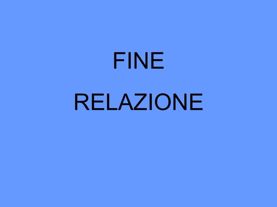 FINE RELAZIONE