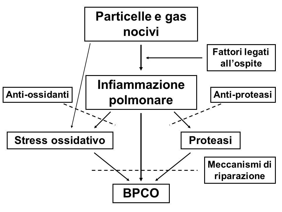 Particelle e gas nocivi Infiammazione polmonare BPCO Stress ossidativoProteasi Fattori legati allospite Anti-ossidantiAnti-proteasi Meccanismi di ripa