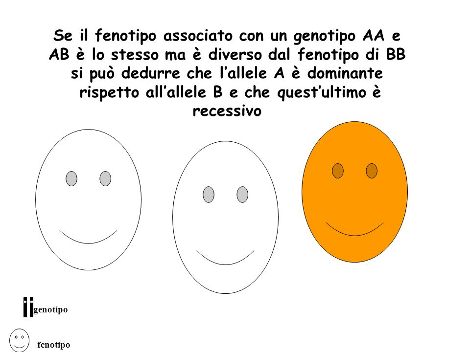Se il fenotipo associato con un genotipo AA e AB è lo stesso ma è diverso dal fenotipo di BB si può dedurre che lallele A è dominante rispetto allalle