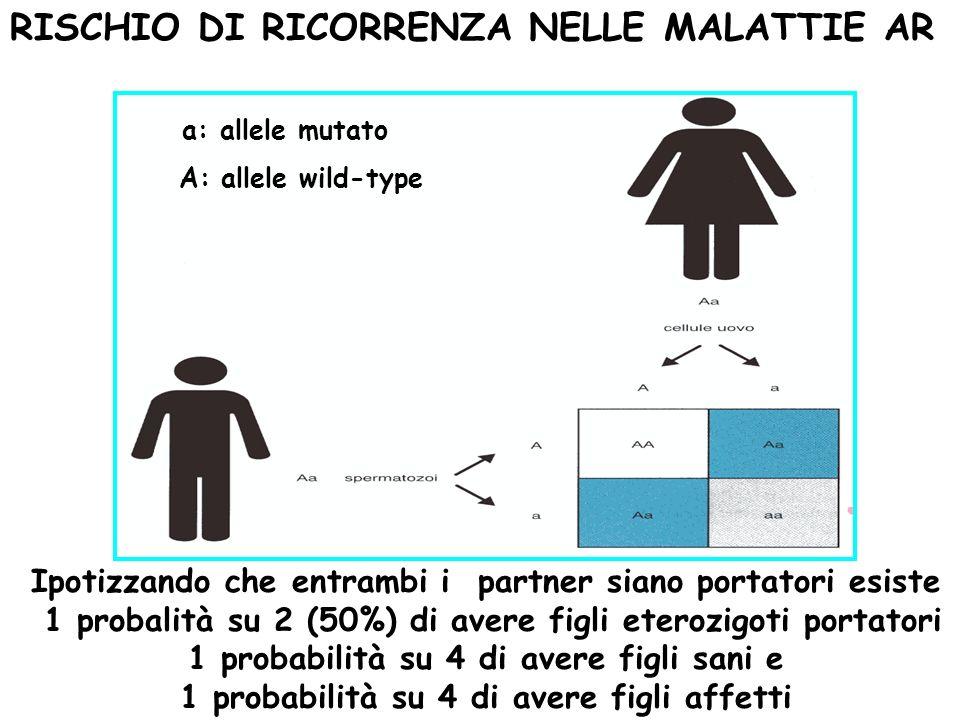 Ipotizzando che entrambi i partner siano portatori esiste 1 probalità su 2 (50%) di avere figli eterozigoti portatori 1 probabilità su 4 di avere figl