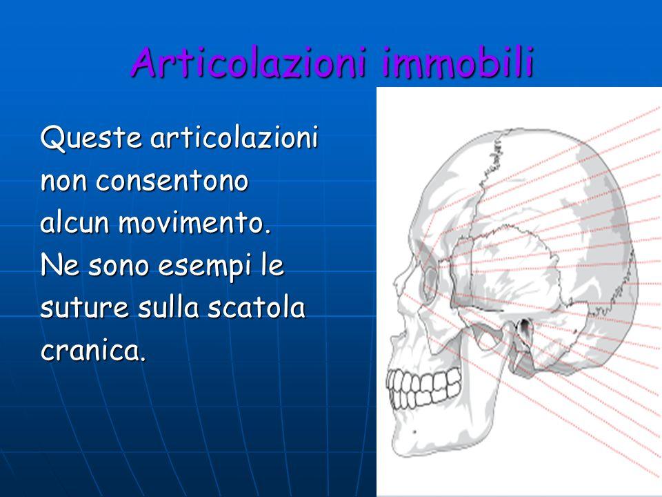 Articolazioni immobili Queste articolazioni non consentono alcun movimento. Ne sono esempi le suture sulla scatola cranica.