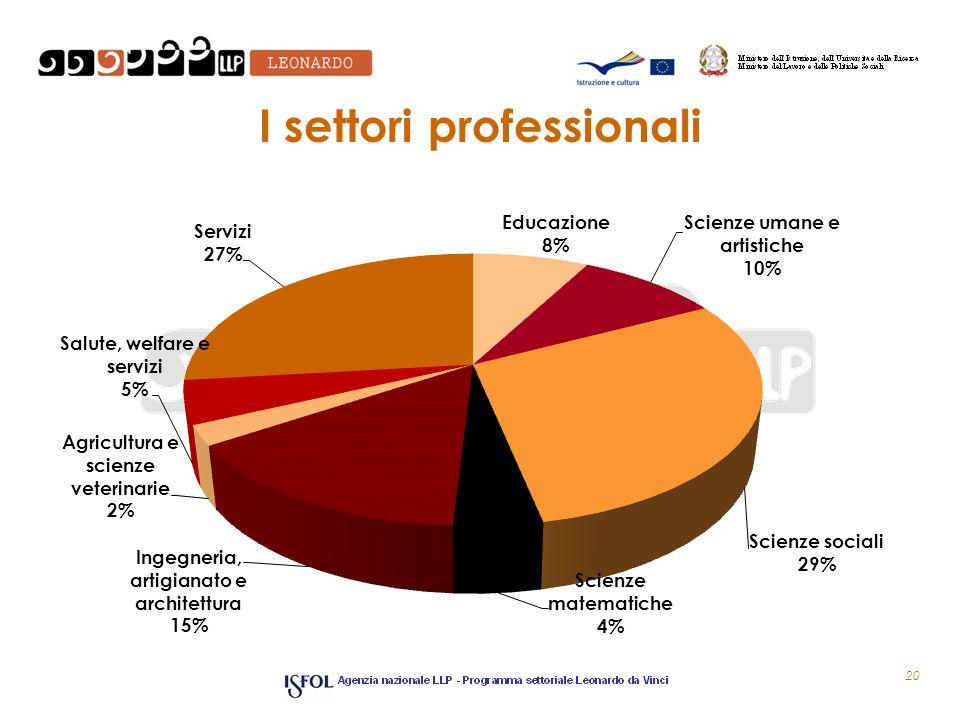 I settori professionali 20