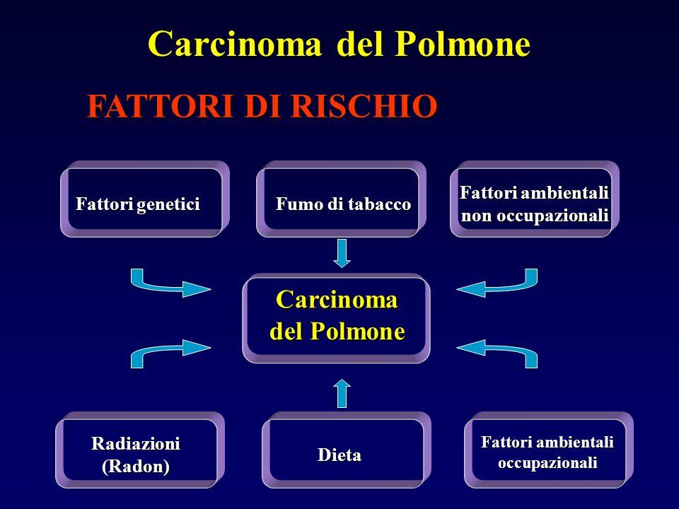 FATTORI DI RISCHIO Carcinoma del Polmone Fattori ambientali occupazionali Fumo di tabacco Dieta Fattori genetici Fattori ambientali non occupazionali Radiazioni (Radon) Carcinoma del Polmone