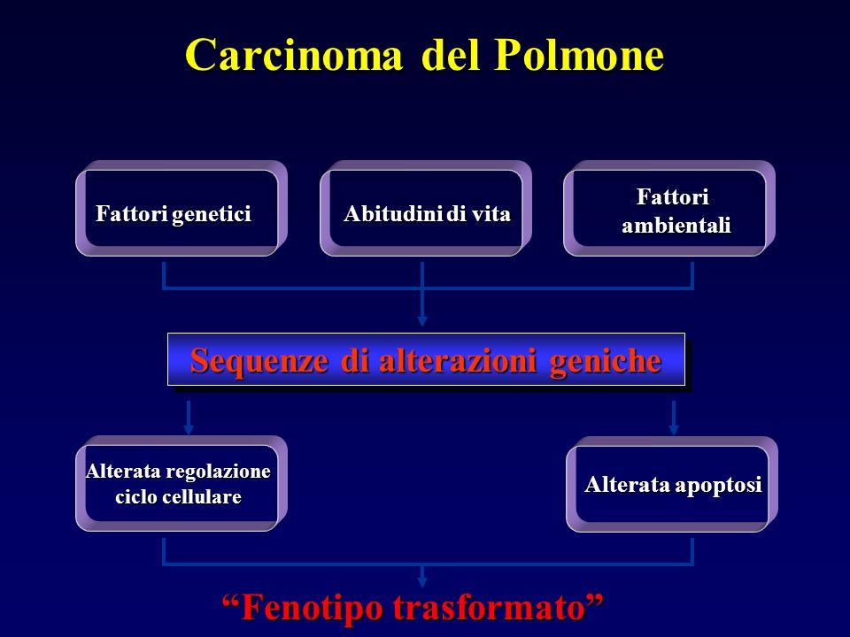 Fenotipo trasformato Fattori genetici Fattori ambientali ambientali Sequenze di alterazioni geniche Alterata apoptosi Alterata regolazione ciclo cellulare Carcinoma del Polmone Abitudini di vita