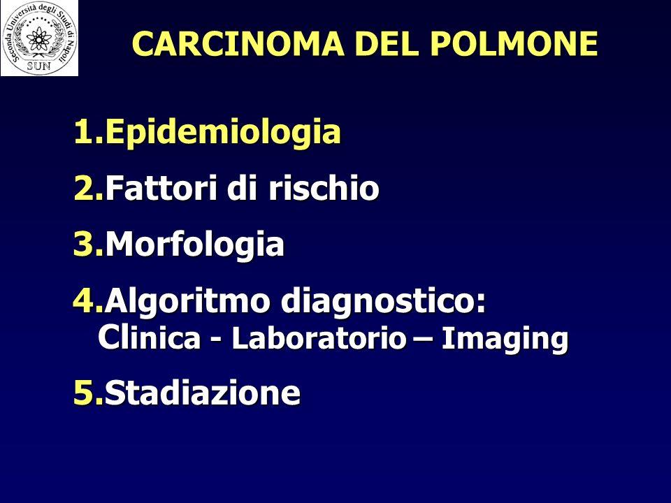 CARCINOMA DEL POLMONE 1.Epidemiologia 2.Fattori di rischio 3.Morfologia 4.Algoritmo diagnostico: Cl inica - Laboratorio – Imaging 5.Stadiazione